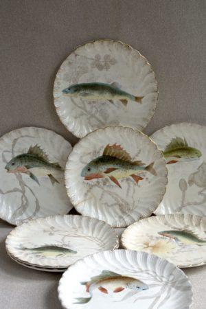 fot_4203-platos-peces
